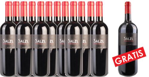 Zweigelt Reserve 2016 Salzl im 12er Pack + 1 Magnum Gratis