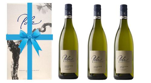 Sauvignon Blanc Czamilla 2017 + 3er Geschenkskarton