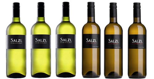 Top-Chardonnay vom Weingut Salzl  im 6 Pack