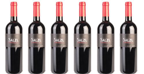 Weingut Salzl  das kleine Kostpaket in Rot !