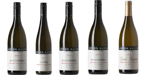 Degustationsweinpaket 6er Pack Anton Bauer