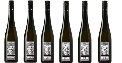 Spectrum 2019  Weingut OTT im 6er Paket