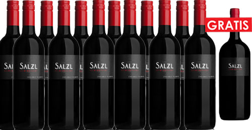 Zweigelt Reserve 2017 Salzl im 12er Pack + 1 Magnum Gratis