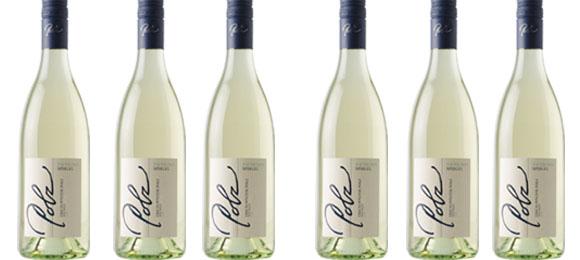 Sauvignon Blanc Spiegel 2018  Polz im 6er Pack