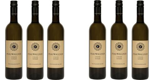 Sauvignon Blanc  Vulkanland Steiermark DAC 2018 im 6er Vorteilspaket