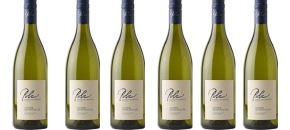 Sauvignon Blanc Südsteiermark DAC 2019 Polz im 6er Paket