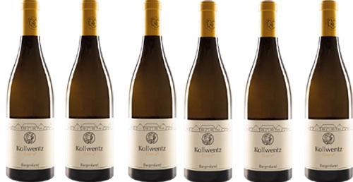 Chardonnay Gloria 2019 Kollwentz