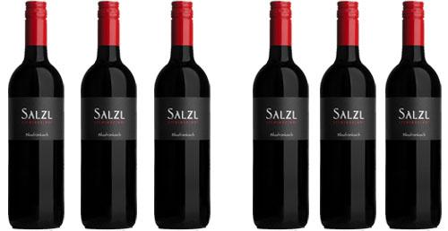 Weingut Salzl  das kleine Kostpaket in Rot!