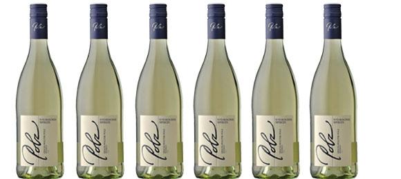 Sauvignon Blanc Spiegel Polz 2019  im 6er Pack