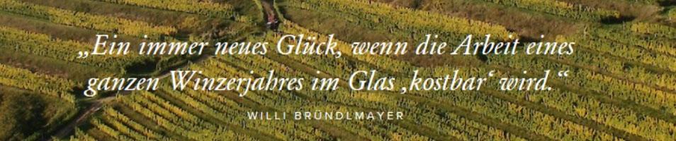 Bründlmayer Willi