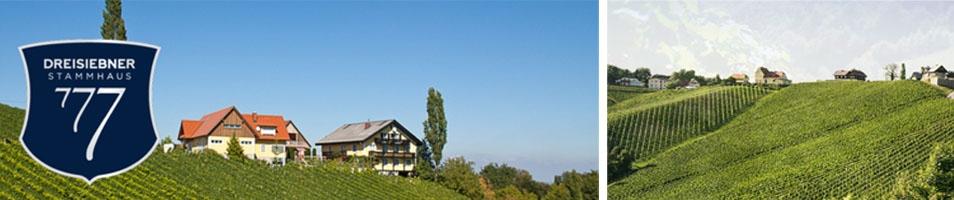 Dreisiebner Stammhaus (Gamlitz)