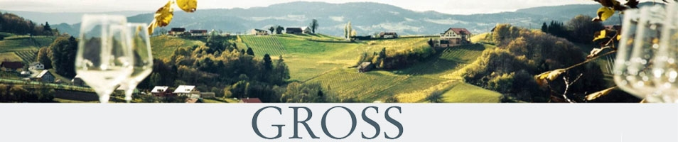 Gross Alois
