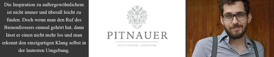 Pitnauer (Göttelsbrunn)
