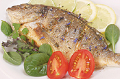 Fisch & Krustentiere